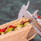 正しい糖質制限食はカロリー計算が必要|タンパク質と脂肪を十分に摂る